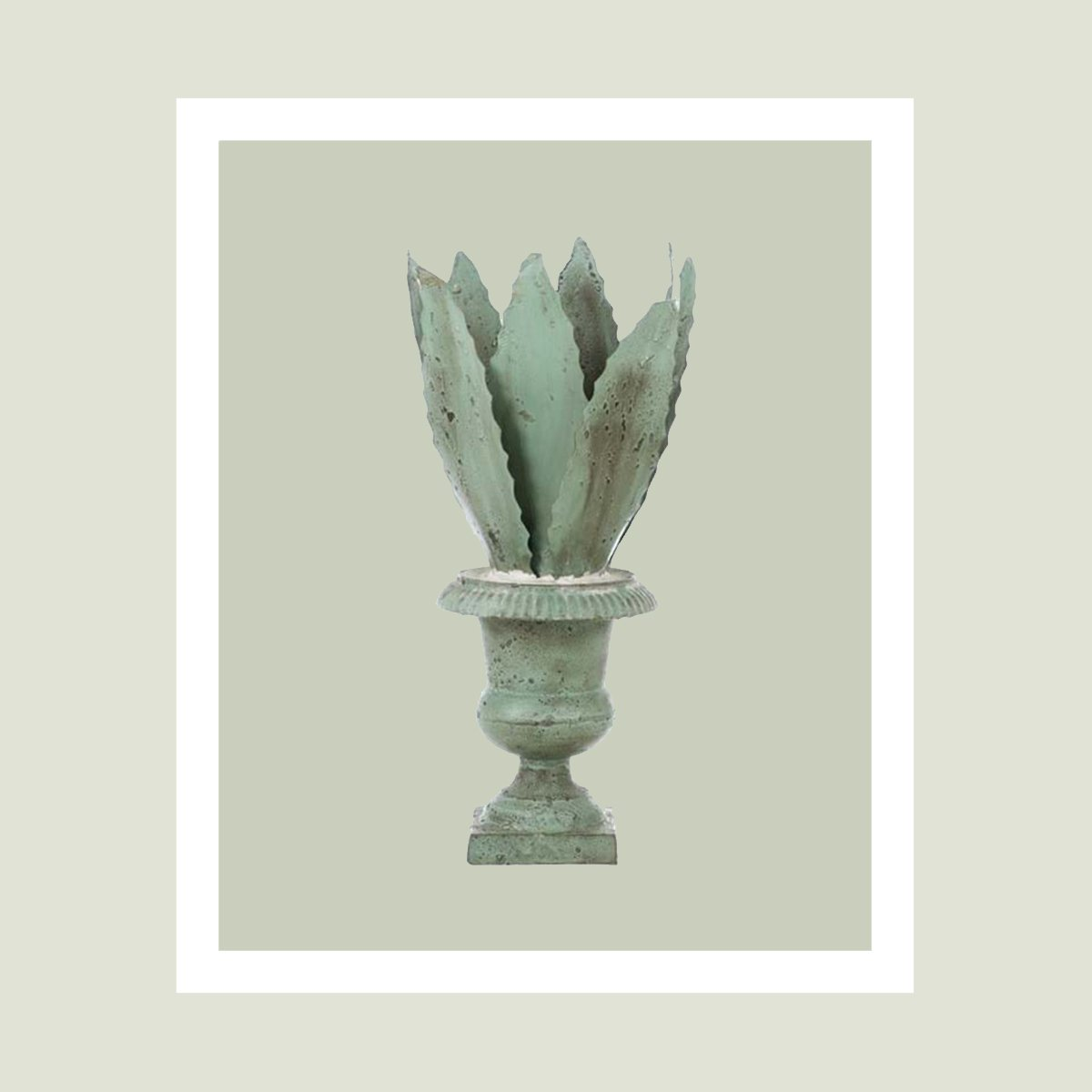 agave in ferro battuto