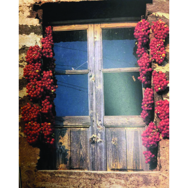 libro di cucina ricette siciliane